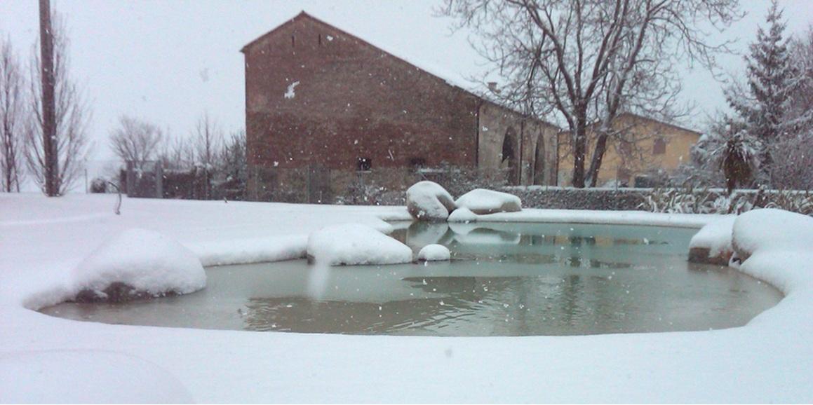 Bio Baseinas žiema